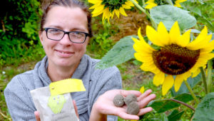 Taller gratuito de bombas de semillas para reforestar áreas verdes | Octubre 2018