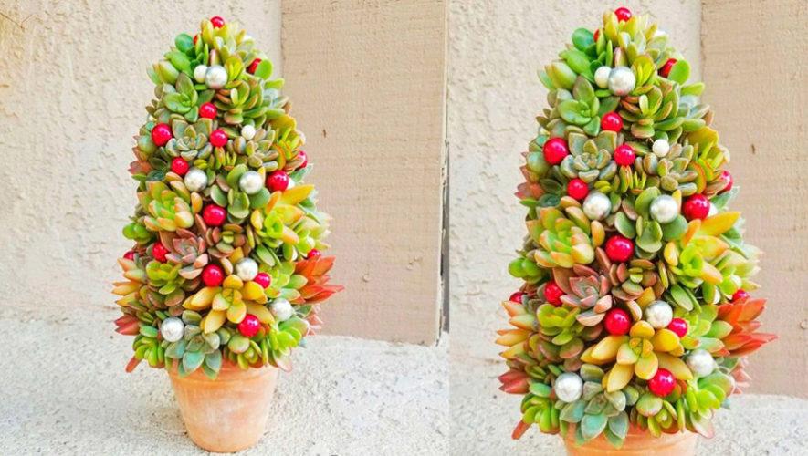 Taller para aprender a crear un árbol navideño con suculentas | Diciembre 2018