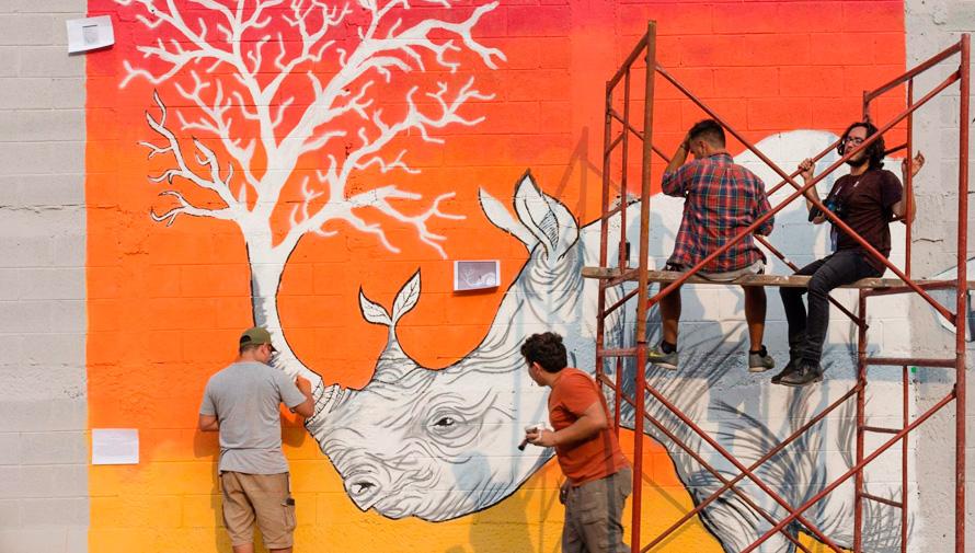 Convocatoria De Artistas Para El Festival De Murales En El Zoologico