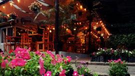 Noche de música en vivo y venta nocturna de plantas | Noviembre 2018