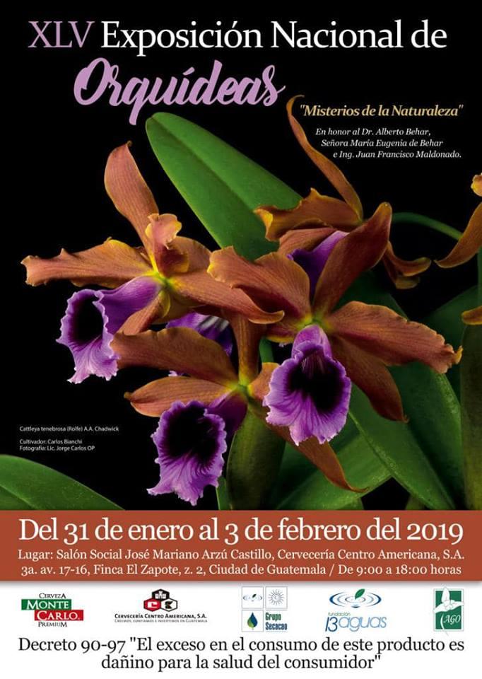 (Foto: Asociación Guatemalteca de Orquideología - AGO- Oficial)