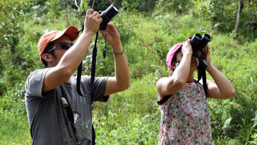 Conteo navideño de aves en Parque Nacional Volcán de Pacaya   Diciembre 2018