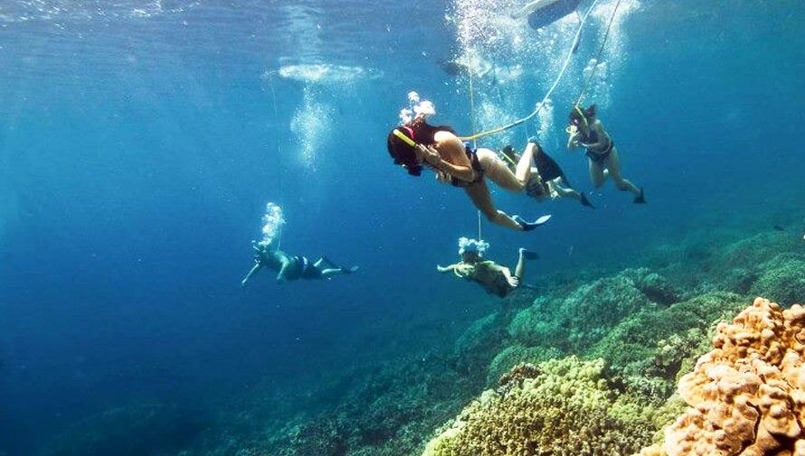Viaje para bucear en Punta de Manabique, Izabal