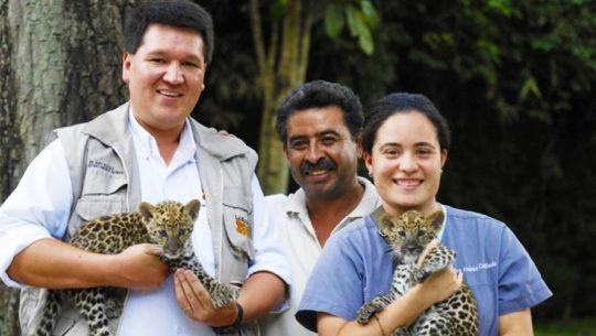 Convocatoria para ser voluntario del Zoológico La Aurora en Guatemala