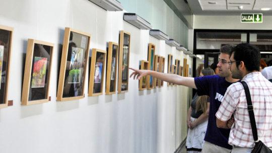 Guatemaltecos podrán exponer sus técnicas artísticas en una galería