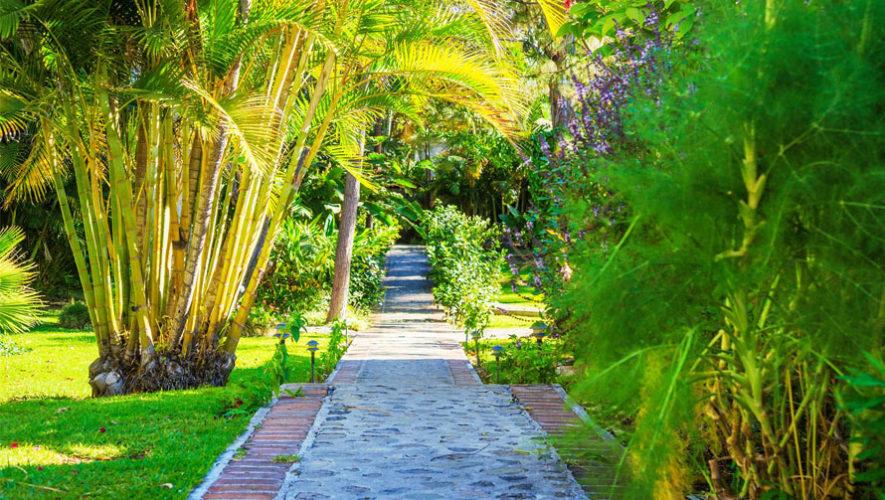 Parqueo De Regis Hotel Y Spa