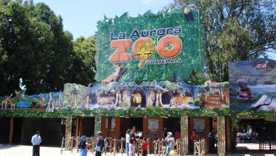 Zoológico La Aurora ofrece empleo para personas en silla de ruedas