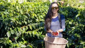 Tour de café en Finca el Barretal | Marzo 2018