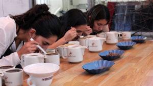 Curso gratuito de catación de café | Febrero 2018