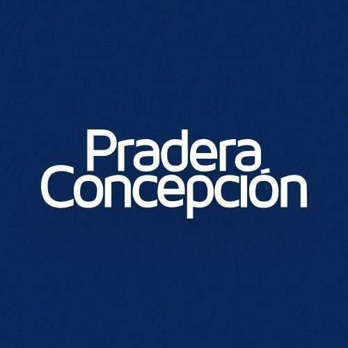 Centro Comercial Pradera Concepción