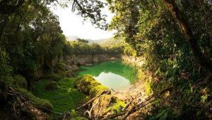 Viaje para conocer la Laguna Brava y los Cenotes | Marzo 2018
