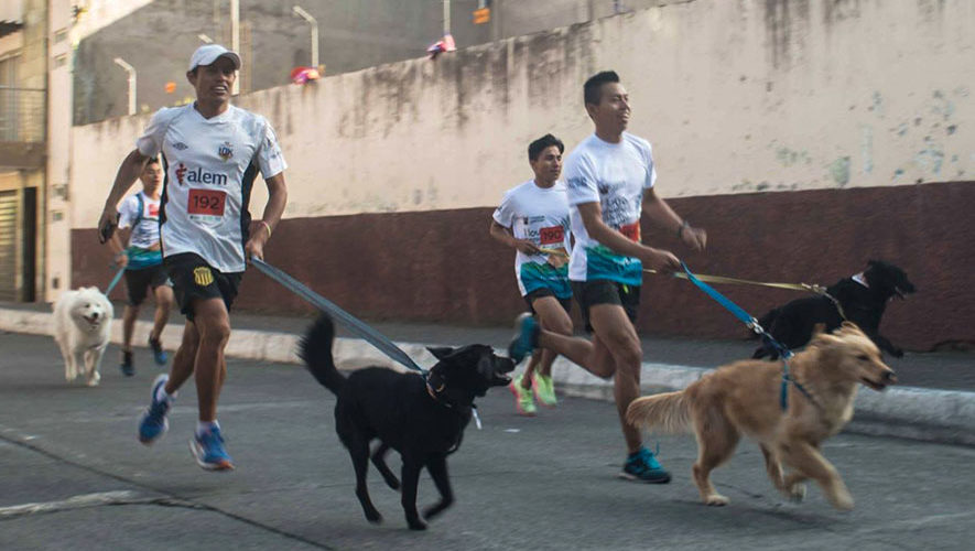 Carrera Pet-Run en Mixco | Marzo 2018