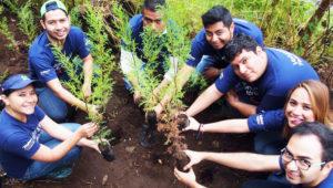 Charla para aprender a reforestar árboles   Febrero 2018
