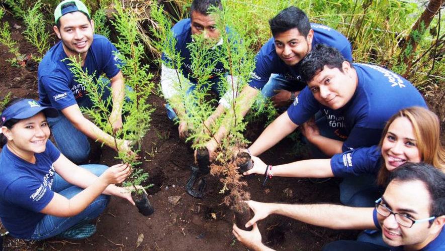 Charla para aprender a reforestar árboles | Marzo 2018