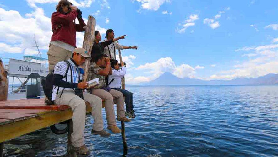 En el Guatemala Bird Fair Atitlán 2018 observarás más de 400 especies de aves
