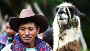 Viaje para ver llamas y conocer lugares de Huehuetenango | Marzo 2018