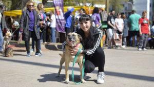 Jornada de adopciones en San Cristóbal   Marzo 2018