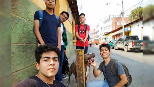 Jóvenes reparten comida para perros sin hogar en Amatitlán
