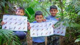 Proyectos que están ayudando al medio ambiente en Guatemala