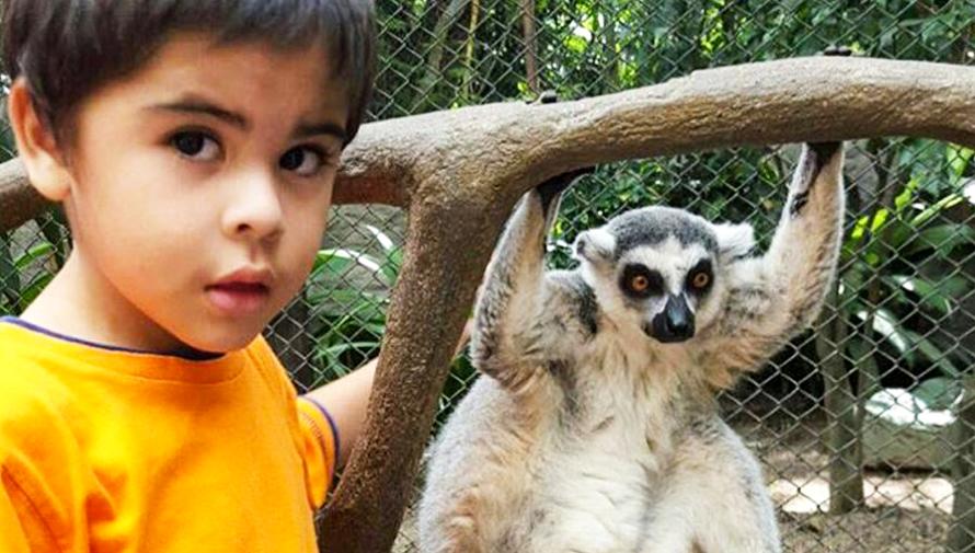 KinderZoo 2018, el curso para niños en el Zoológico La Aurora