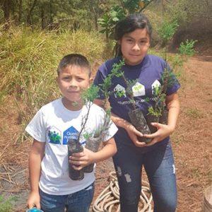 Siembra de árboles en Guatemala.