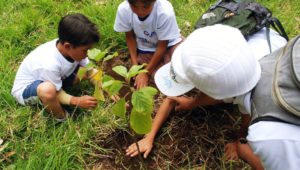 Siembra un árbol por el Día de la Tierra en Guatemala   Abril 2018