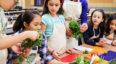 Talleres de alimentación vegana para niños | Abril - Mayo 2018