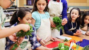 Talleres de alimentación vegana para niños   Abril - Mayo 2018