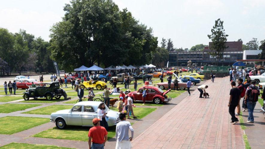 Festival de verano dedicado a automóviles | Abril 2018