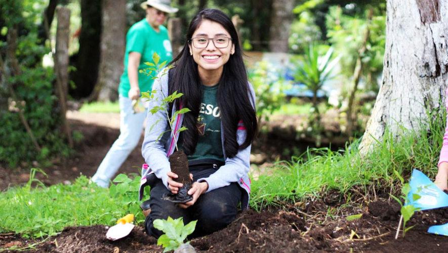 Primer reforestación masiva en Guatemala   Mayo 2018