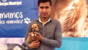 Jornada de adopciones de perros en Mixco | Mayo 2018