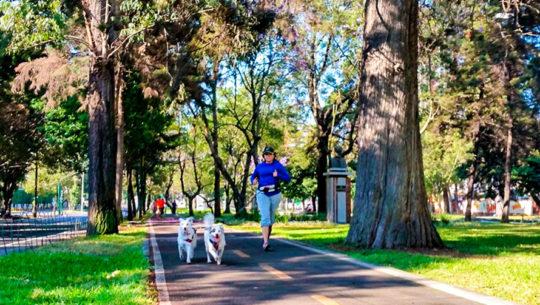 Circuitos de entreno para correr en la Ciudad de Guatemala
