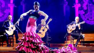 Concierto de flamenco con baile en vivo | Febrero 2019