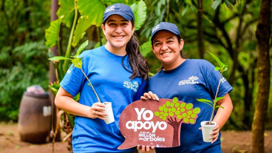 Convocatoria de voluntarios 2019 para sembrar árboles en Guatemala