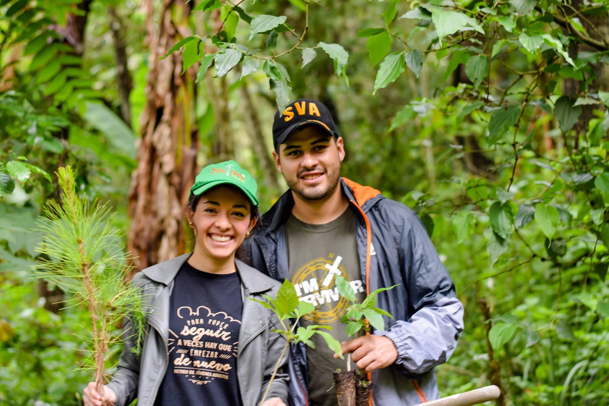Convocatoria de voluntarios para sembrar árboles en Guatemala 2019