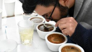 Curso de catación de café en Guatemala | Enero 2019
