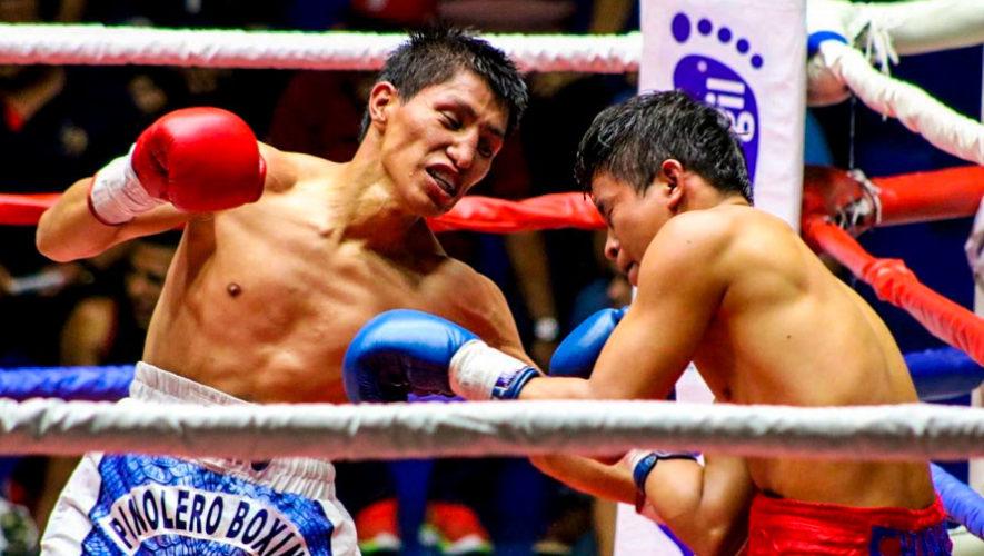 Gran Noche de Boxeo Profesional | Febrero 2019