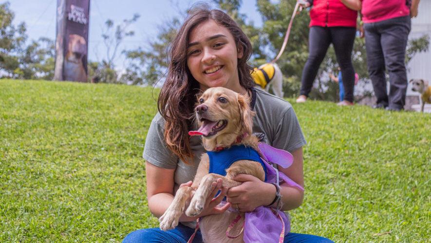 Mercadito especial para mascotas en Carretera a El Salvador | Enero 2019