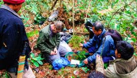National Geographic ofrece financiamiento para ambientalistas guatemaltecos, 2019