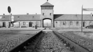 Proyección de la película Auschwitz en el Museo del Holocausto | Enero 2019