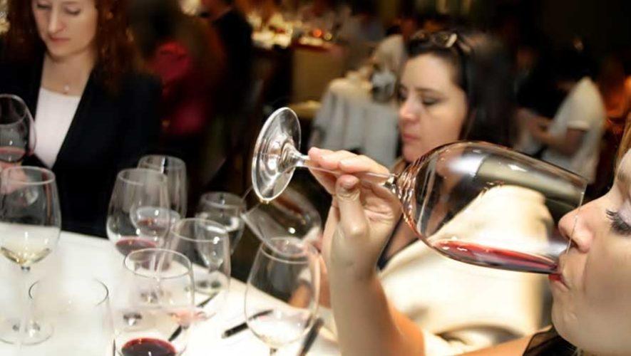 Taller básico de vinos en Sophos | Enero 2019