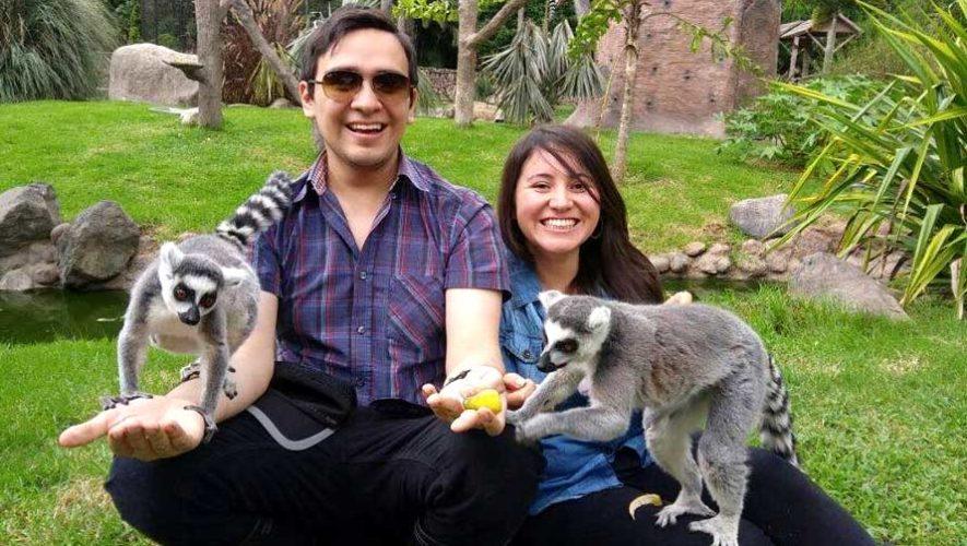 Capacitaciones para voluntariado en el Zoológico la Aurora   Marzo 2019