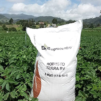 Agrocentro lanzó su programa AsiaCafé por segundo año consecutivo en Guatemala