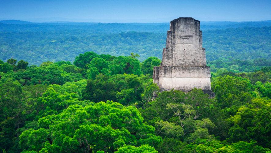 Reserva de la Biosfera Maya de Guatemala fue creada hace 29 años