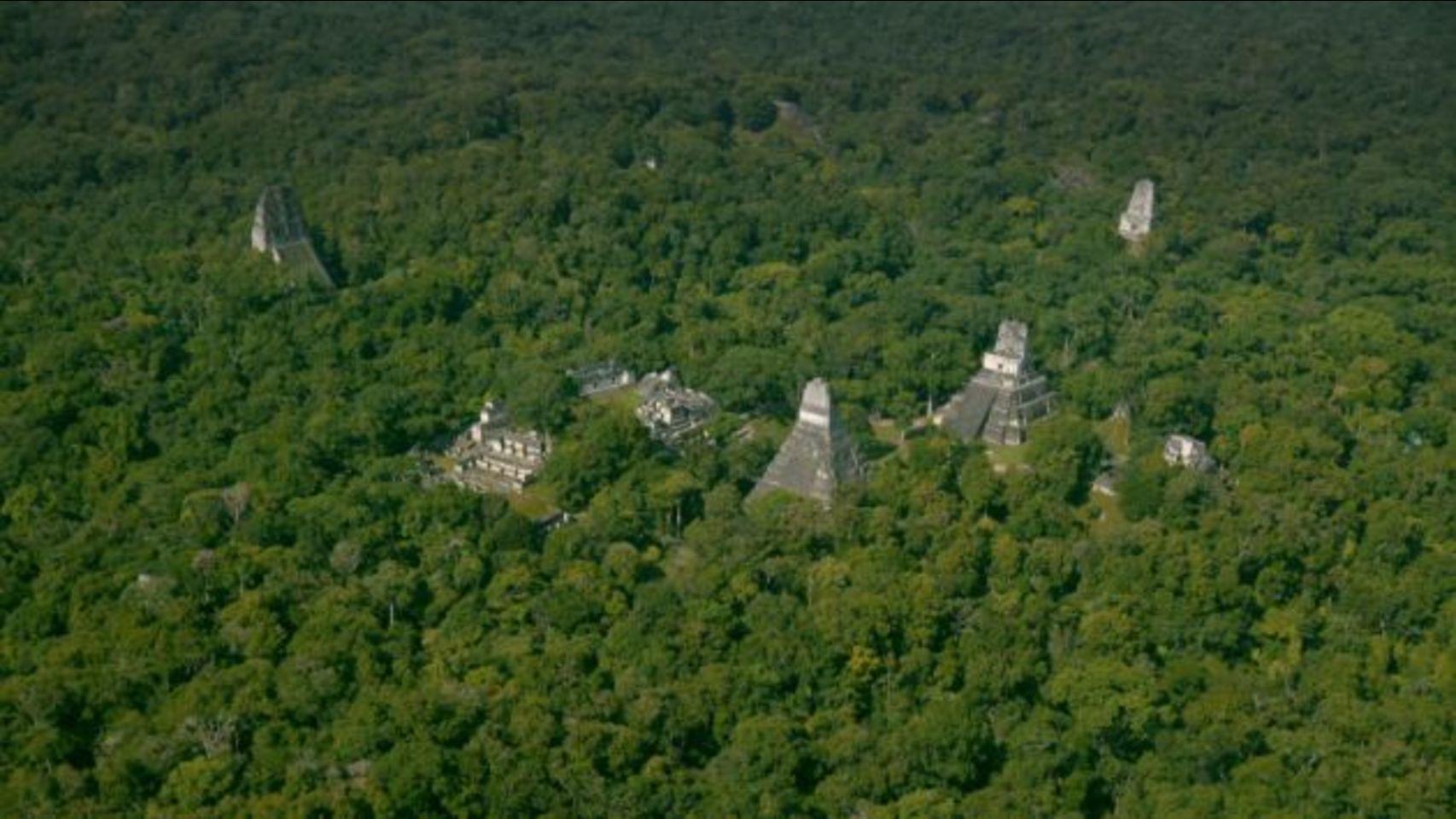 La Reserva de la Biosfera Maya cumple 29 años