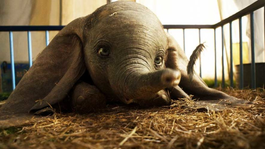 Estreno en Guatemala de la película Dumbo | Marzo 2019