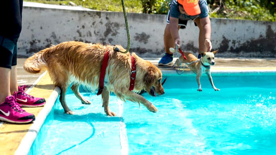 Excursión al Eco Parque Canino en Coatepeque, Quetzaltenango | Abril 2019