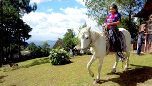 Viaje de un día al parque ecológico Pino Dulce | Abril 2019