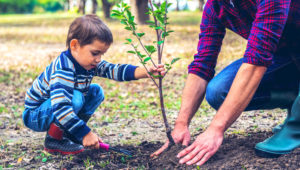 Siembra de árboles en Parque Ecológico Jungla Urbana | Abril 2019
