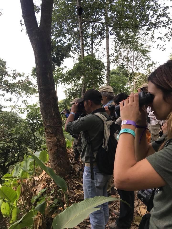 (Foto: Guatemala Bird Fair)
